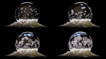 Frozen Bubble Over Time