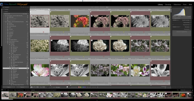 lightroom-full-desktop
