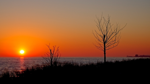 Bond Head Park Shoreline