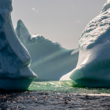 "Twillingate Iceberg ""Safe Harbour"""