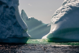 "Twillingate Iceberg ""Safe Harbour"""