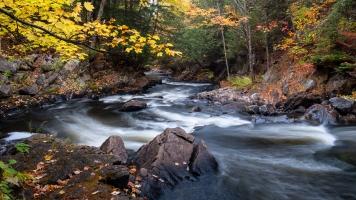 Magnetawan River near Brooks Falls